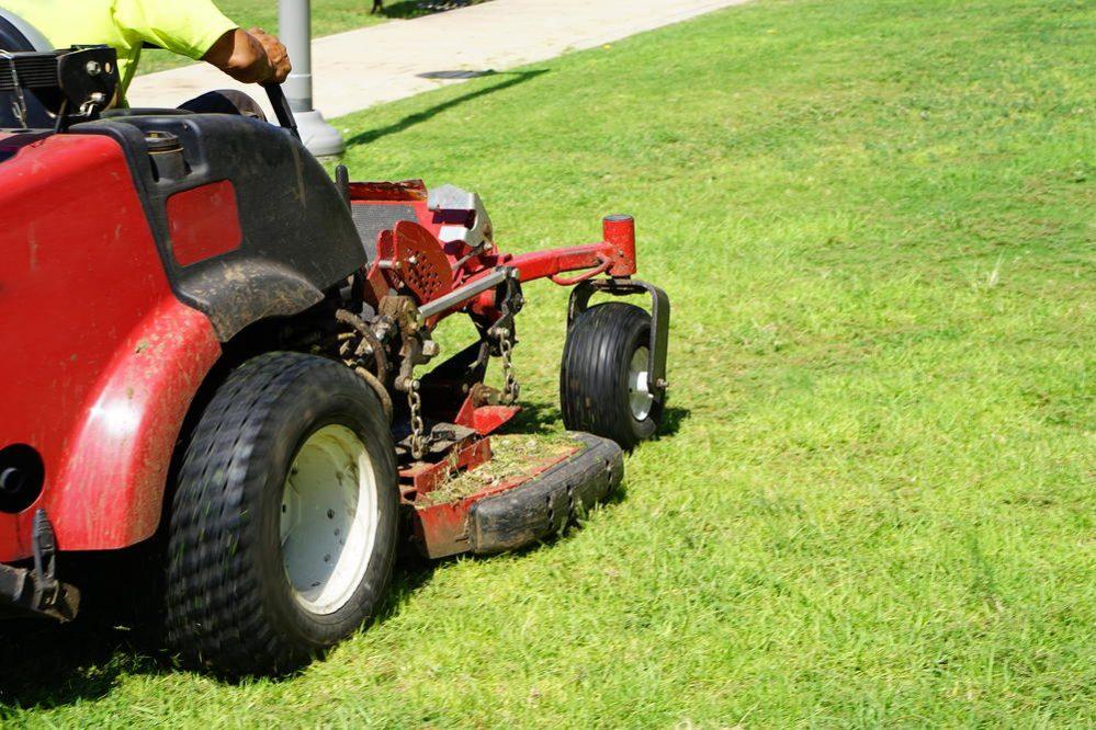 lawn-cutting-service