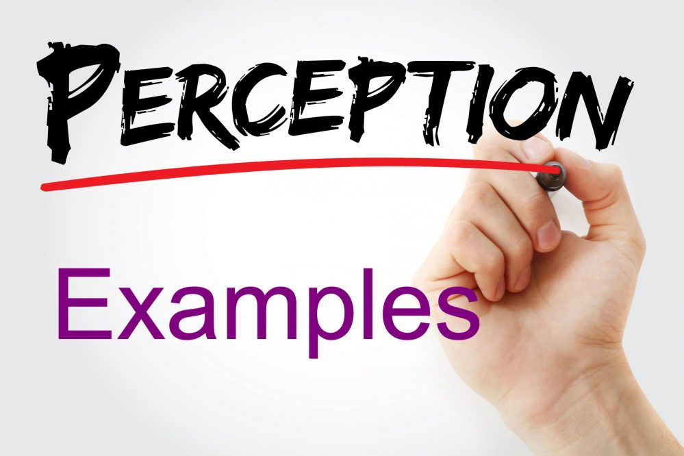 Perception Examples